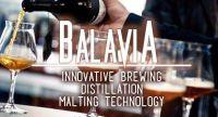 Balavia Logo